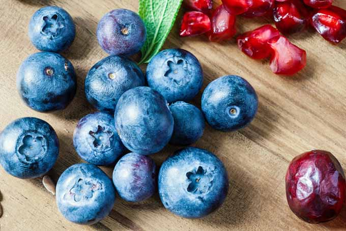 Easy Antioxidant Tips For Optimal Nourishment | Foodal.com