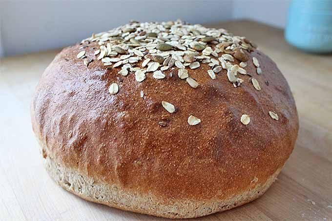 How to Bake Bread with Whole Grain Flour | Foodal.com