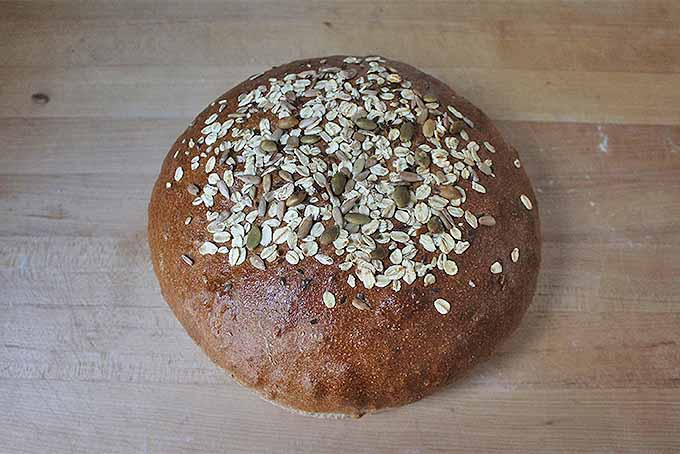How to Bake with Whole Grains | Foodal.com