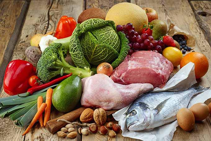Paleo diet foods | Foodal.com