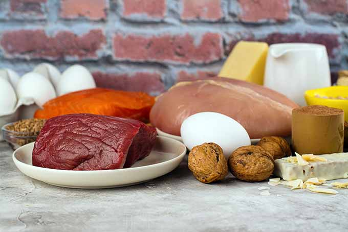 Lean meat and assorted protein sources | Foodal.com