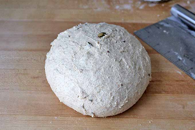 Tips and Tricks to Bake Whole Grains   Foodal.com