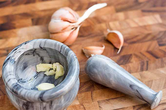 Smash fresh garlic in a mortar and pestle to make homemade Lemon Aioli Dressing. | Foodal.com