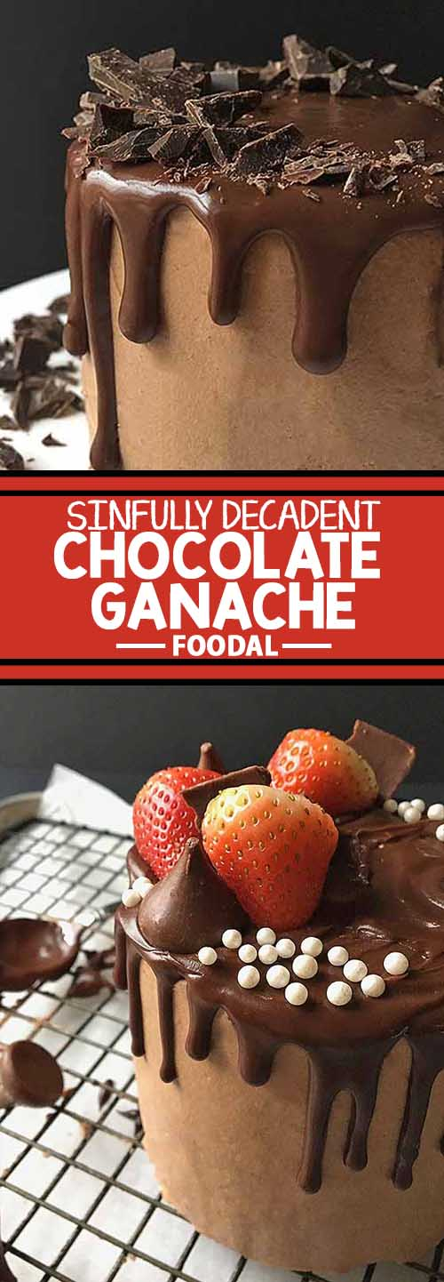 Want to indulge in a sinfully decadent dessert? We'll tempt you with a batch of our rich and creamy chocolate ganache. All you need are three ingredients to make this easy recipe. We'll even show you a few different ways to use it as a pastry decoration, so you can enjoy this over-the-top chocolaty treat as much as possible. Get the recipe now on Foodal.