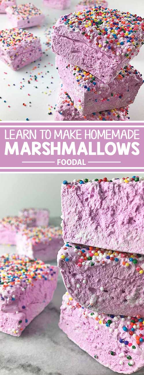 Have you ever wanted to learn how to create designer marshmallows right in your own kitchen? Get the inside scoop and find out how you can create your favorite varieties with our simple recipe. From plain vanilla to chocolate to strawberry or whatever your heart desires. Find out more now on Foodal.