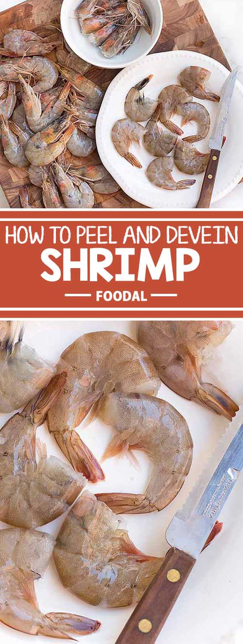 Have you ever wondered how chefs prep those perfectly cleaned shrimp for your cocktail? It's called deveining, and it involves careful peeling and removal of the guts. To perfect your technique, read more now on Foodal.