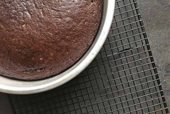 Freshly baked chocolate cake on a cooling rack | Foodal.com