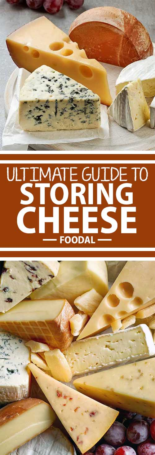 """Stocked up on fancy cheese and you want to make sure it stays tasty until the last bite? Not sure what the part of your fridge labeled """"Cheese Drawer"""" is for? Never fear – Foodal has your comprehensive guide to wrapping and storing fine cheeses in your home refrigerator so they stay fresh until they're gone!"""