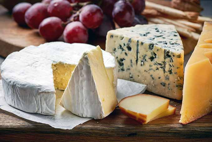 From Brie to Cheddar, learn how to properly store all cheeses | Foodal.com