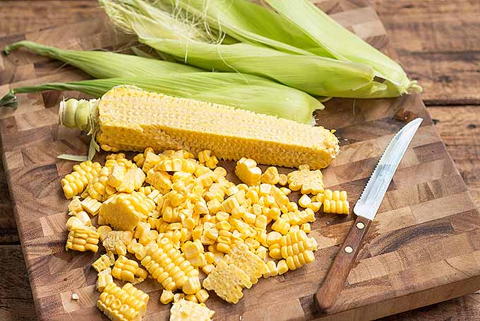 Prepping fresh corn for sweet cornmeal pancakes. | Foodal.com