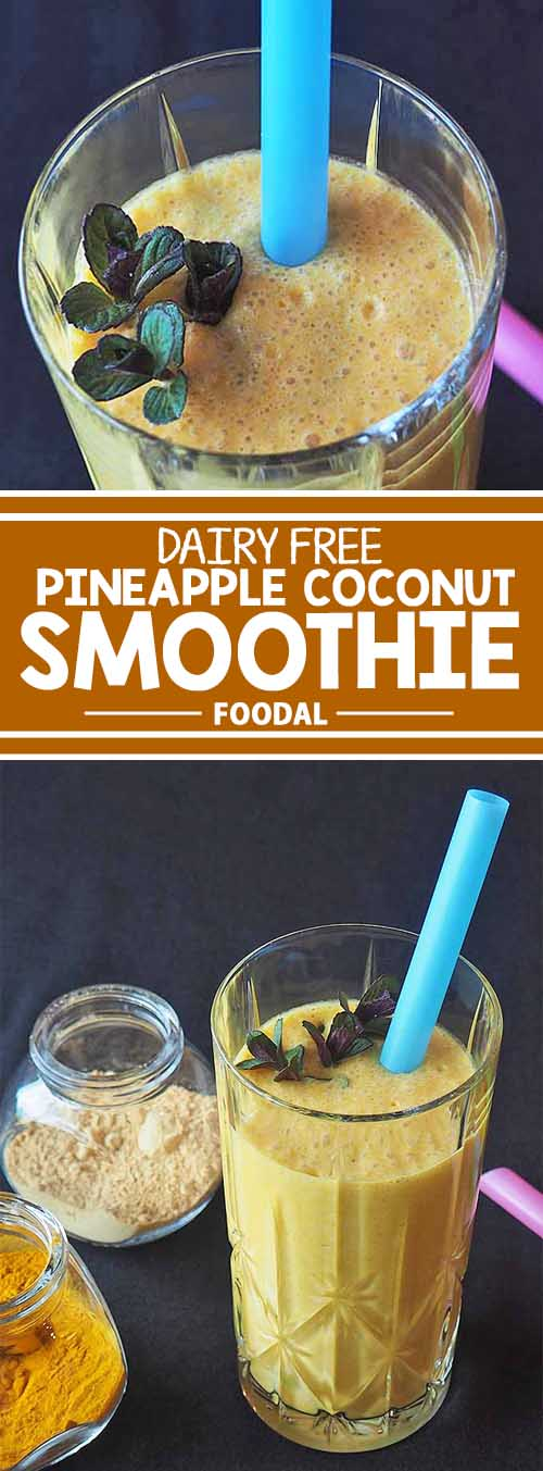 Smoothies are a great option for a quick breakfast drink, or as a mid-afternoon energizer – and this pineapple coconut smoothie is filled to the brim with healthy ingredients. This plant-based beverage is a good choice for those looking to go non-dairy or with allergy concerns, and it's a natural with C-rich citrus fruits and stimulating spices. Get the recipe on Foodal!