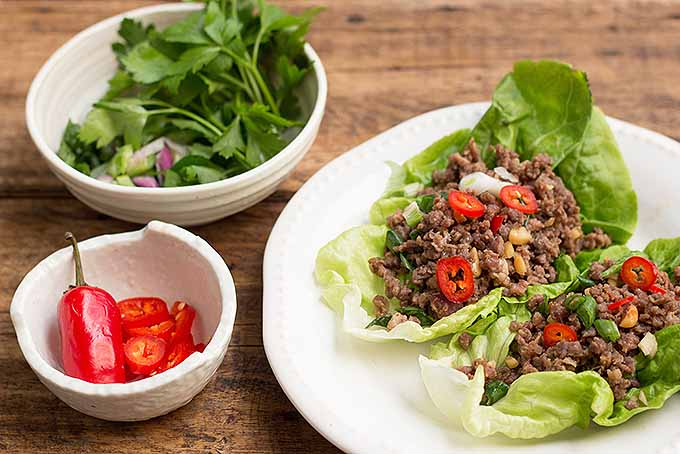 Spicy ground beef lettuce wraps, with some delicious garnishes like parsley and red chili. | Foodal.com
