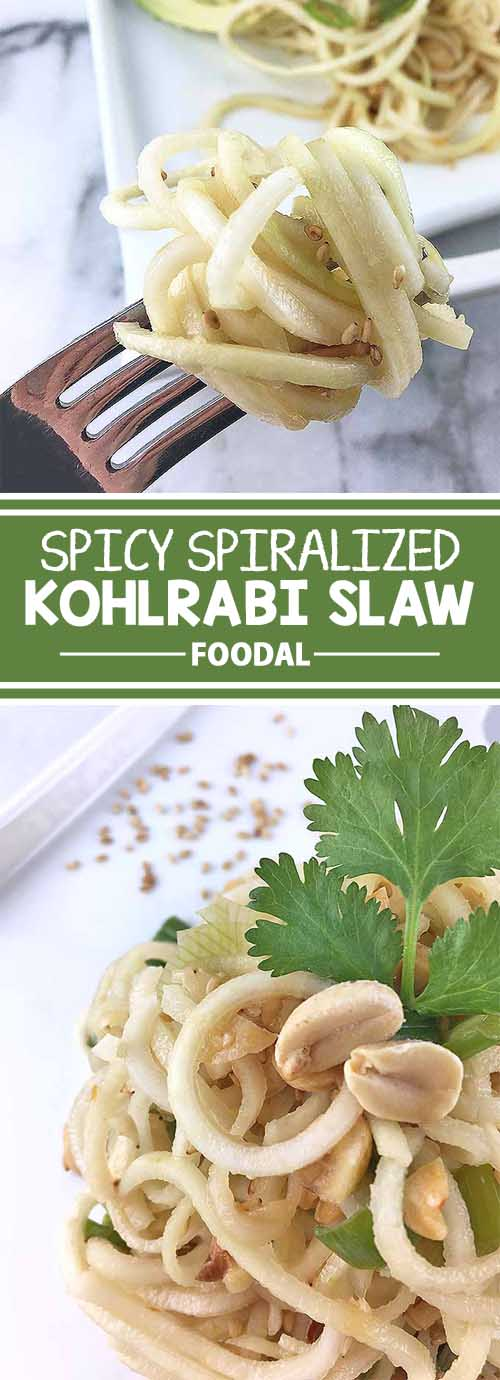 Spicy Spiralized Kohlrabi Slaw
