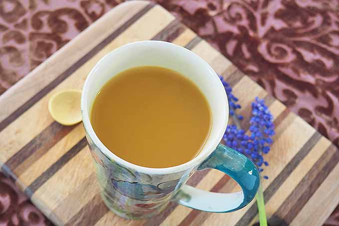 Enjoy a fragrant blend of spices in a cup of homemade turmeric tea. | Foodal.com