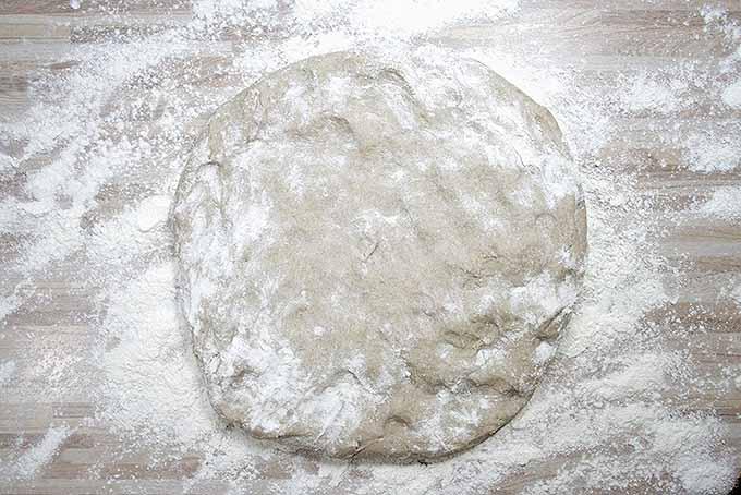 Beginning the kneading process to make dark rye bread. | Foodal.com