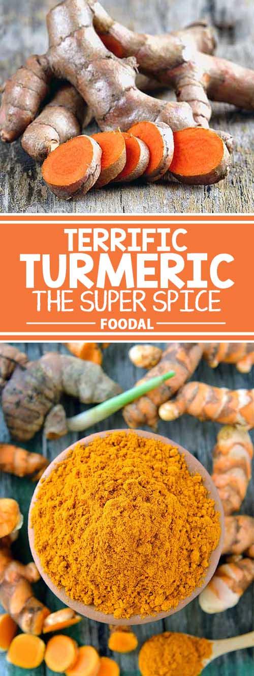 Terrific Turmeric, the Super Spice