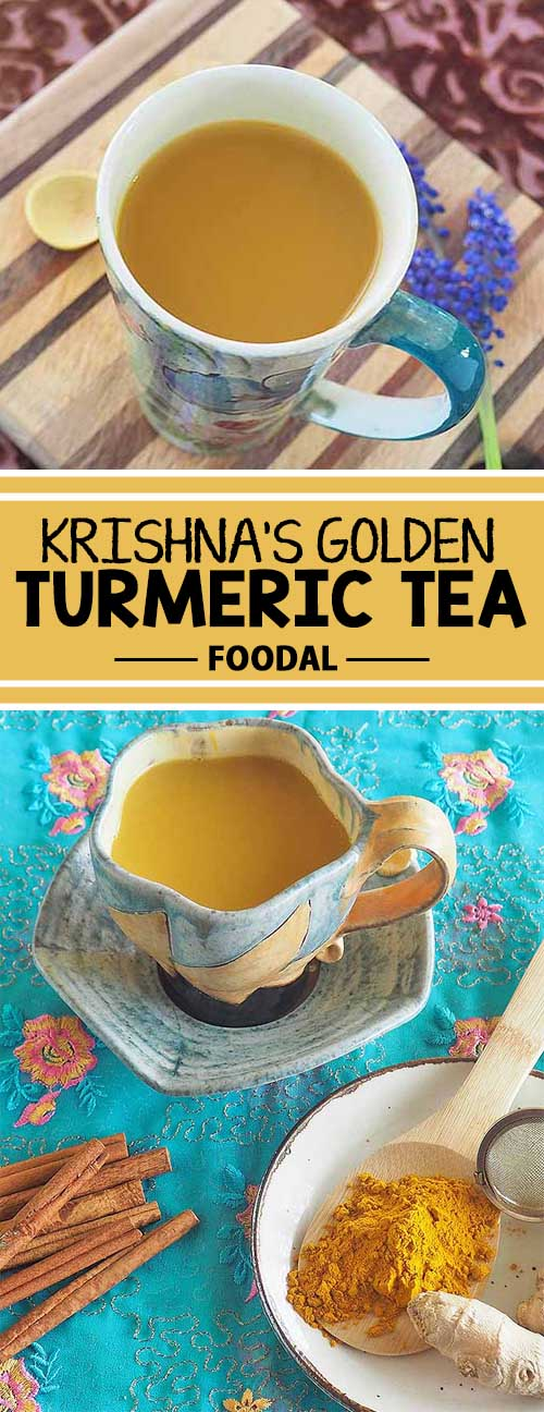 Adding a variety of antioxidants to your daily menu is a smart move for disease prevention and overall good health. And spices deliver them in spades – well, tea cups in this instance. Krishna's Golden Turmeric Tea is a fragrant blend of spices that delivers a delicious, gently stimulating beverage that's good for you, too. Get this easy recipe now on Foodal, and enjoy the benefits!