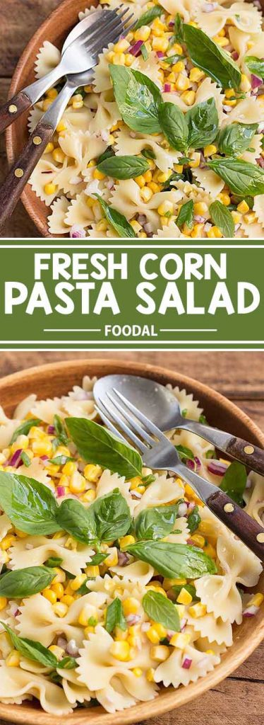 This fresh corn pasta salad is the perfect side to bring to picnics and barbecues during the warmer months. Not only is it easy to prepare, it's also a beautiful sight for the eyes that's big on fresh flavor! Get the recipe on Foodal now.