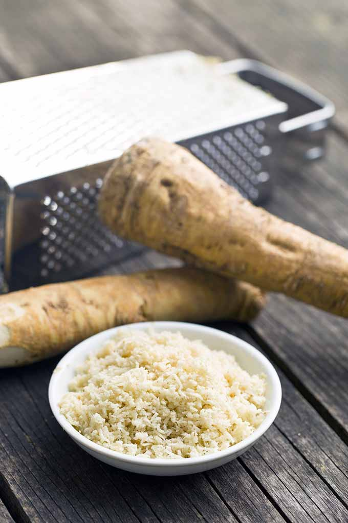 Want to learn how to prep and use horseradish? Read our article now: https://foodal.com/knowledge/herbs-spices/horseradish-fiery-root/