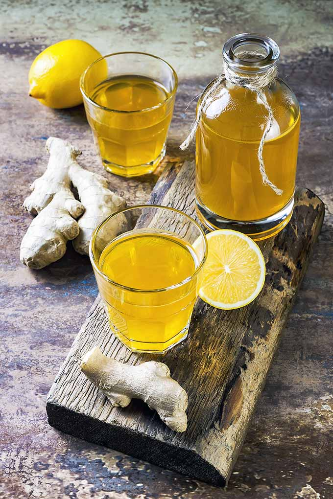 Want a healthy gut? Start consuming more fermented foods, like this refreshing kombucha beverage! Learn more about other fermented foods you should incorporate in your diet now: https://foodal.com/knowledge/paleo/fermented-foods-healthy-gut/