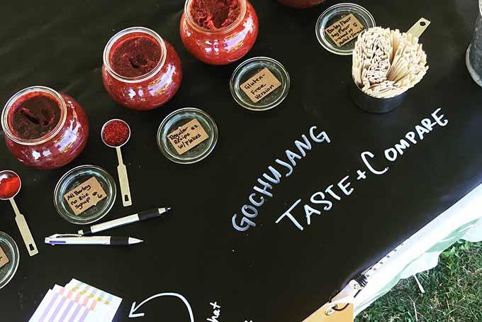 A homemade gochujang tasting. | Foodal.com