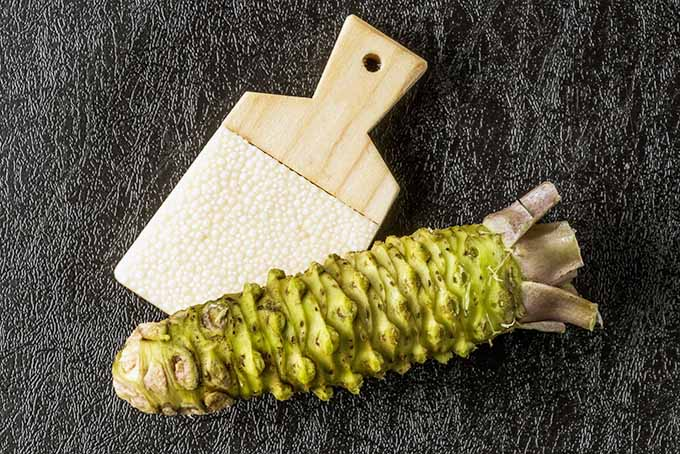 Whole wasabi, ready to grate! | Foodal.com