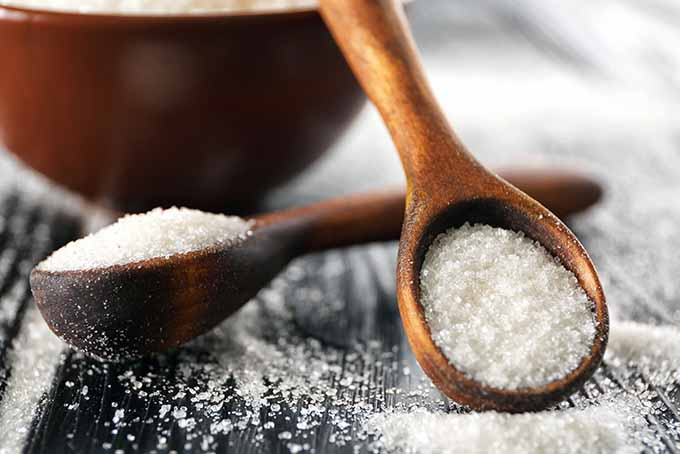 Granulated sugar, one of the most popular types. | Foodal.com