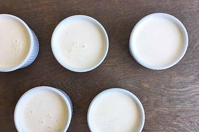 Creme brulee custard, ready for baking! | Foodal.com