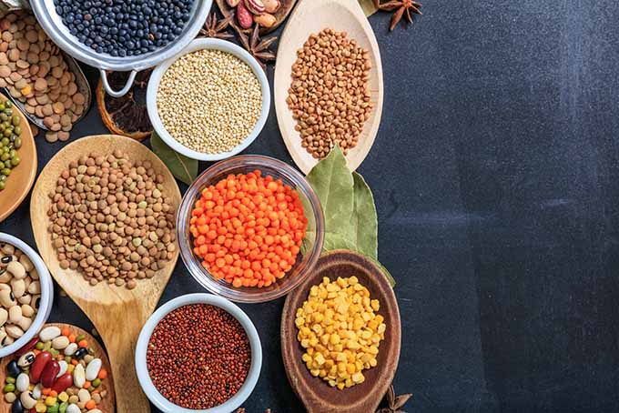 Maintain a healthy diet by including a variety of pulses. | Foodal.com