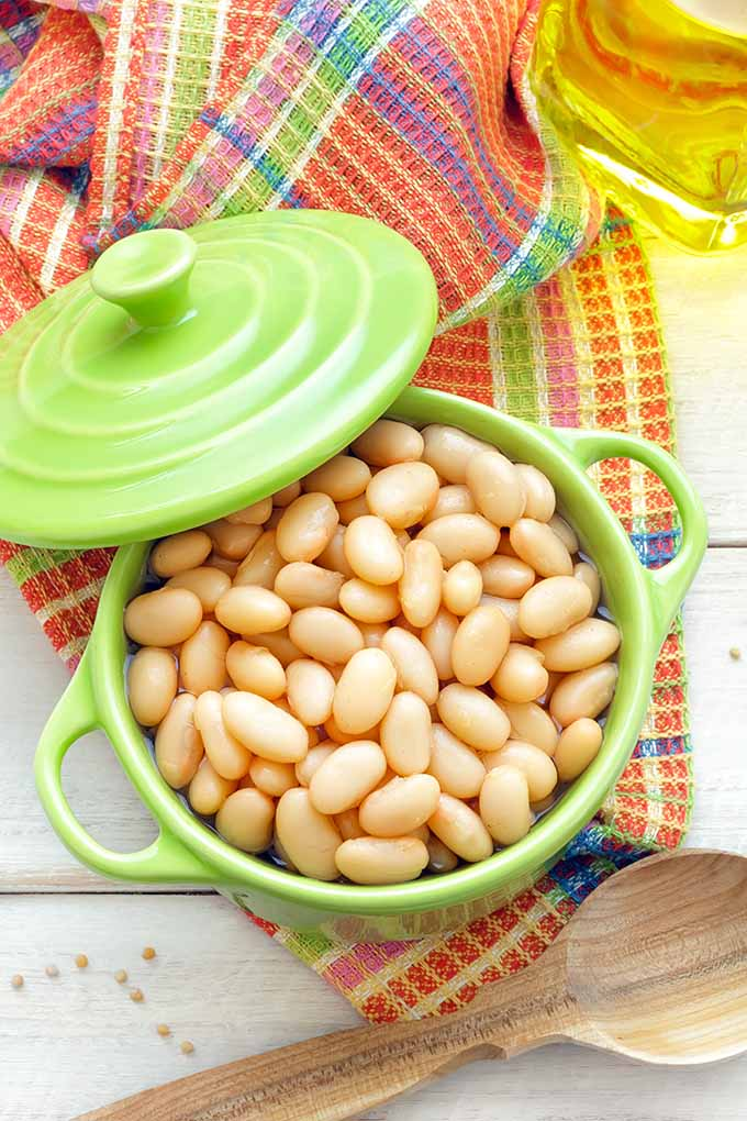 The battle is on! Canned vs. Dried Beans! Check out Foodal's guide comparing taste, nutrition, and cooking ease of these healthy legumes, and learn a little something about the fresh varieties, too: https://foodal.com/knowledge/paleo/canned-dried-beans/