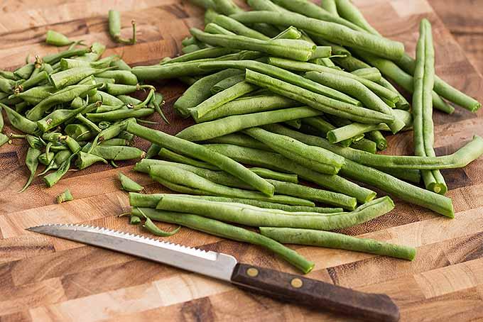 Bean Fries | Foodal.com