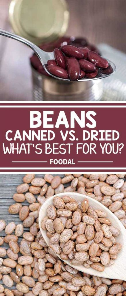 Have you wondered about the differences between canned and dried beans? Check out Foodal's guide comparing taste, nutrition, and cooking ease of these healthy legumes and you'll learn a little something about fresh beans, too.