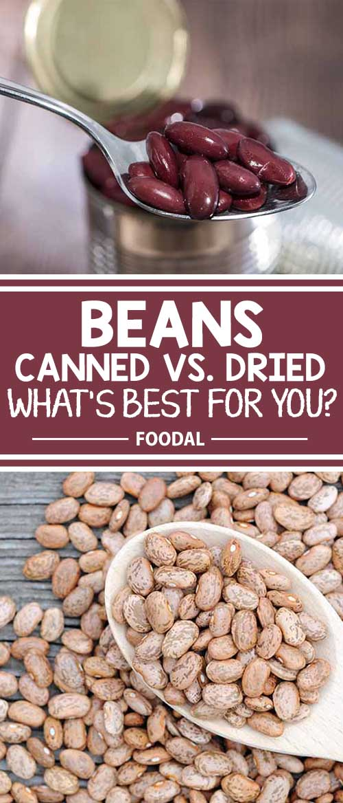 Canned vs. Dried: A Battle of the Beans to Decide What's Best for You!
