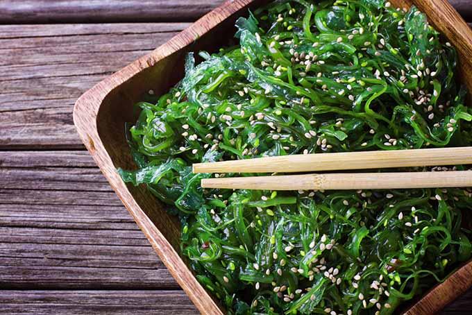 Cold Wakame Salad | Foodal.com