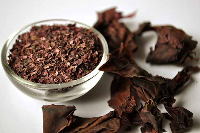 Dried Dulse with Bowl of Flakes   Foodal.com
