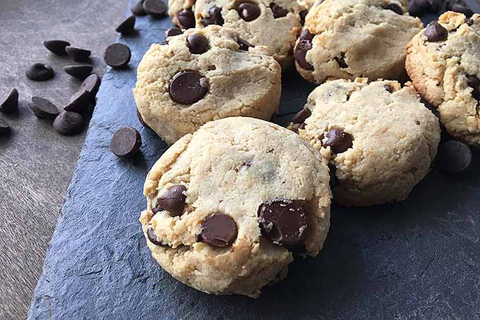 Grain-Free Chocolate Chip Cookies | Foodal.com