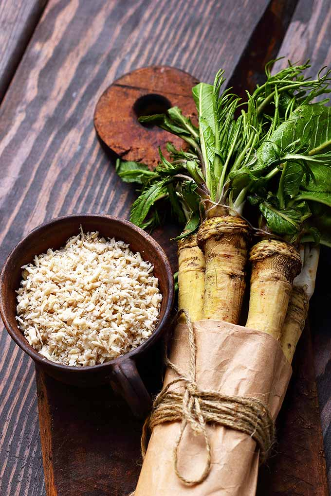 Love horseradish and wasabi? You may be surprised to learn the truth behind these two tangy ingredients! Read more now on Foodal: https://foodal.com/knowledge/herbs-spices/horseradish-wasabi/