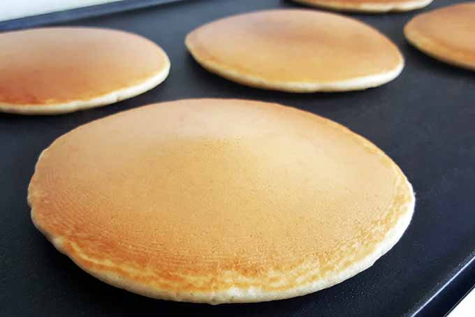 Review of the Top 5 Griddles for Your Flapjacks | Foodal.com
