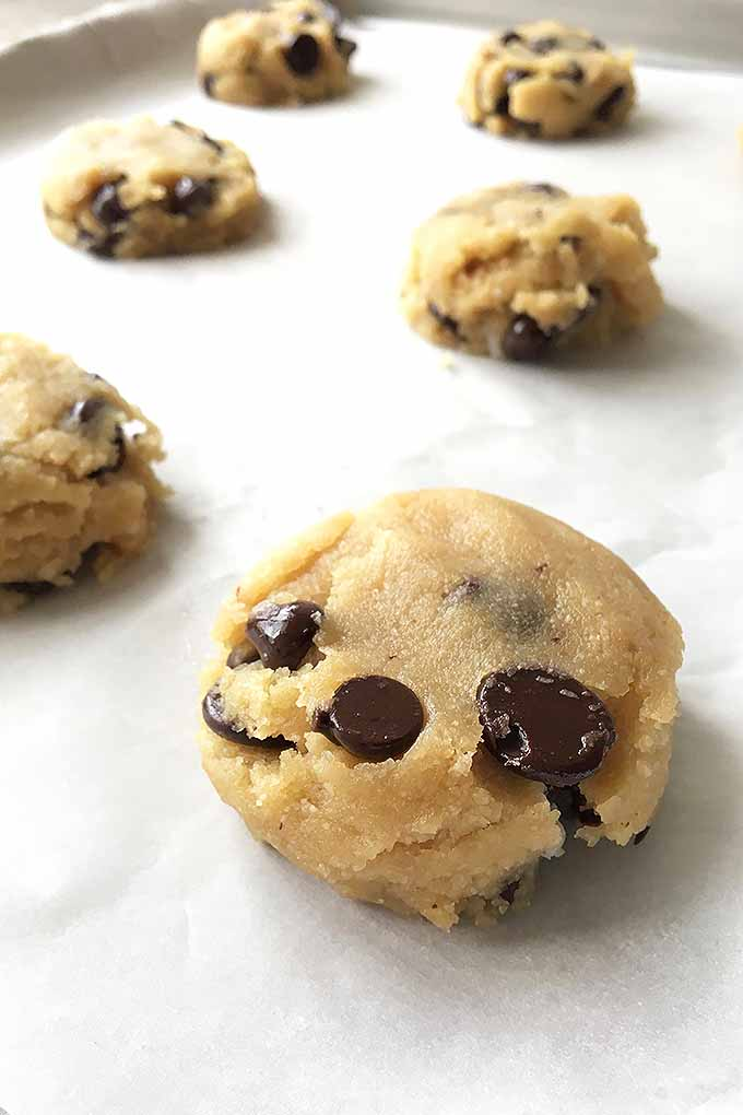 Need a delicious paleo dessert? Try these grain-free chocolate chip cookies! We share the recipe: https://foodal.com/recipes/desserts/grain-free-chocolate-chip-cookies/