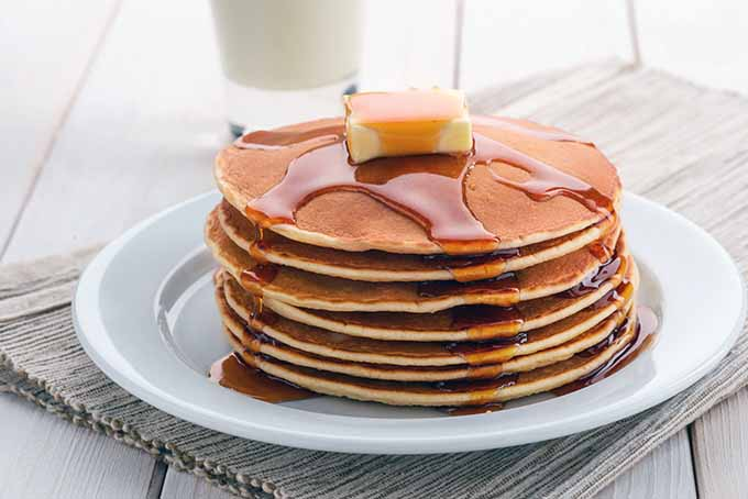 The Top 5 Electric Pancake Griddles   Foodal.com
