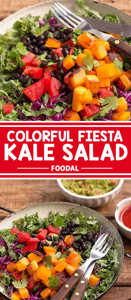 Colorful Fiesta Kale Salad