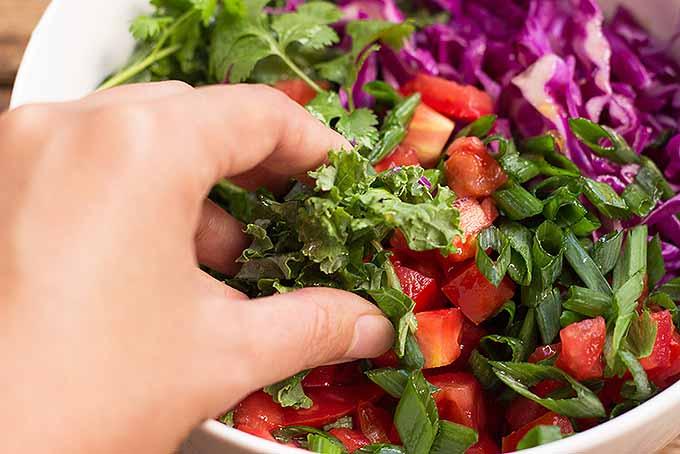 Fresh Fiesta Kale Salad | Foodal.com