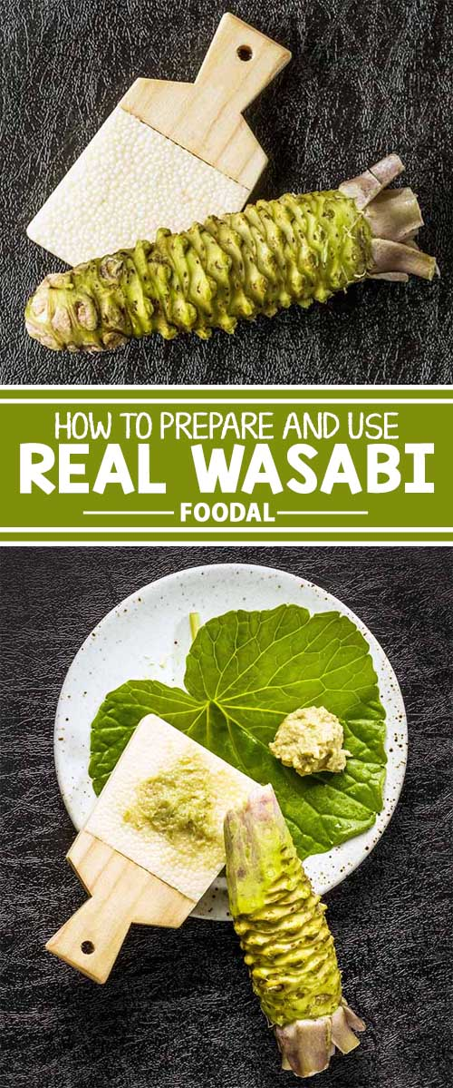 Spicy Wasabi: A Rare Rhizome with Huge Flavor