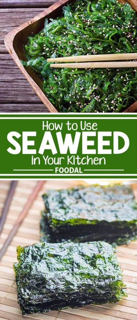 Most of us are familiar with seaweed from enjoying sushi – but that's just the tip of its culinary applications. Rich in nutrients, this marine superfood is right at home in the kitchen, as well as at the beach! Find all the details on how to use and benefit from these ocean veggies right here.