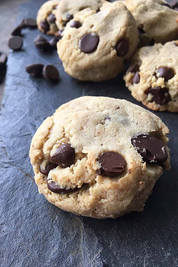 With almond flour, maple syrup, vanilla, and coconut oil, these chocolate chip cookies are completely gluten-free, and completely delicious! We share our sweet recipe: https://foodal.com/recipes/desserts/grain-free-chocolate-chip-cookies/