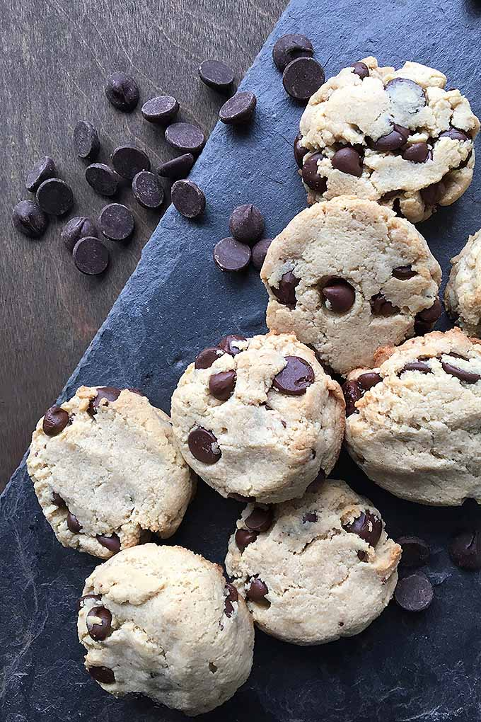 These sweet treats are perfect if you are avoiding dairy, gluten, and eggs. Soft and chewy, our paleo chocolate chip cookies are sure to please! We share our recipe: https://foodal.com/recipes/desserts/grain-free-chocolate-chip-cookies/
