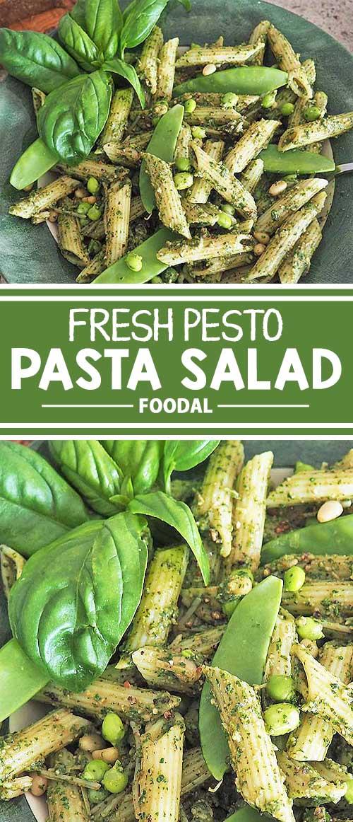 Fresh Pesto Pasta Salad with Green Peas