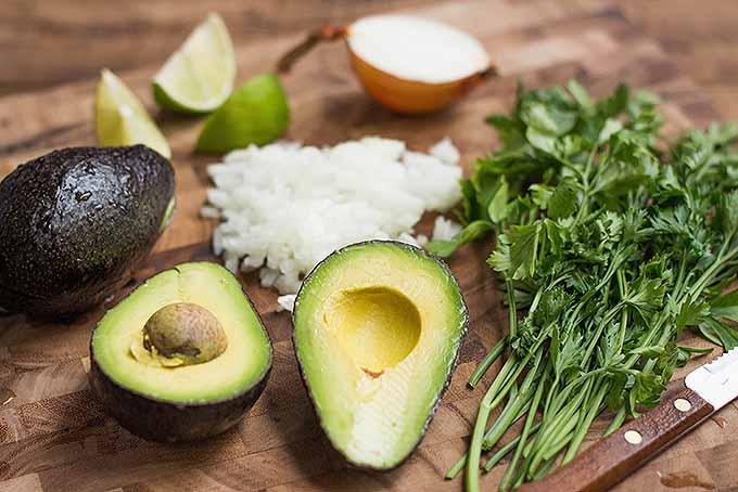 The Best Avocado Appetizer   Foodal.com