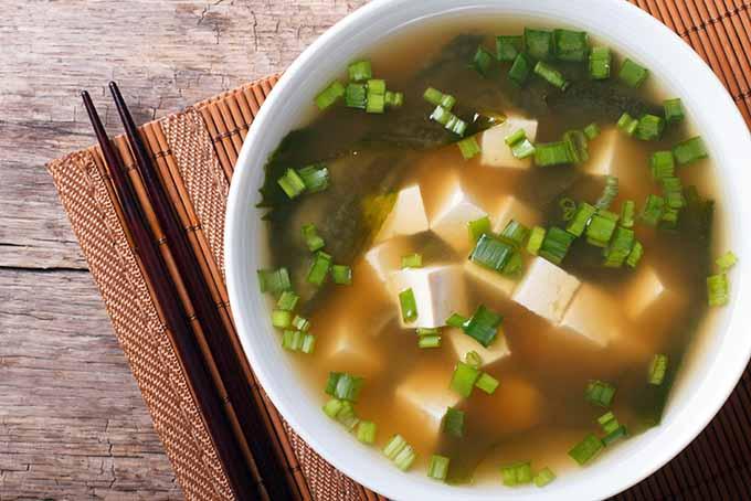 Umami Treat from Japan   Foodal.com