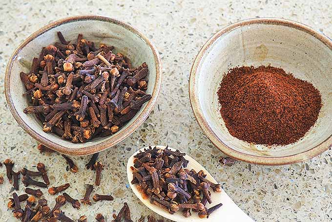 Learn All About Cloves | Foodal.com